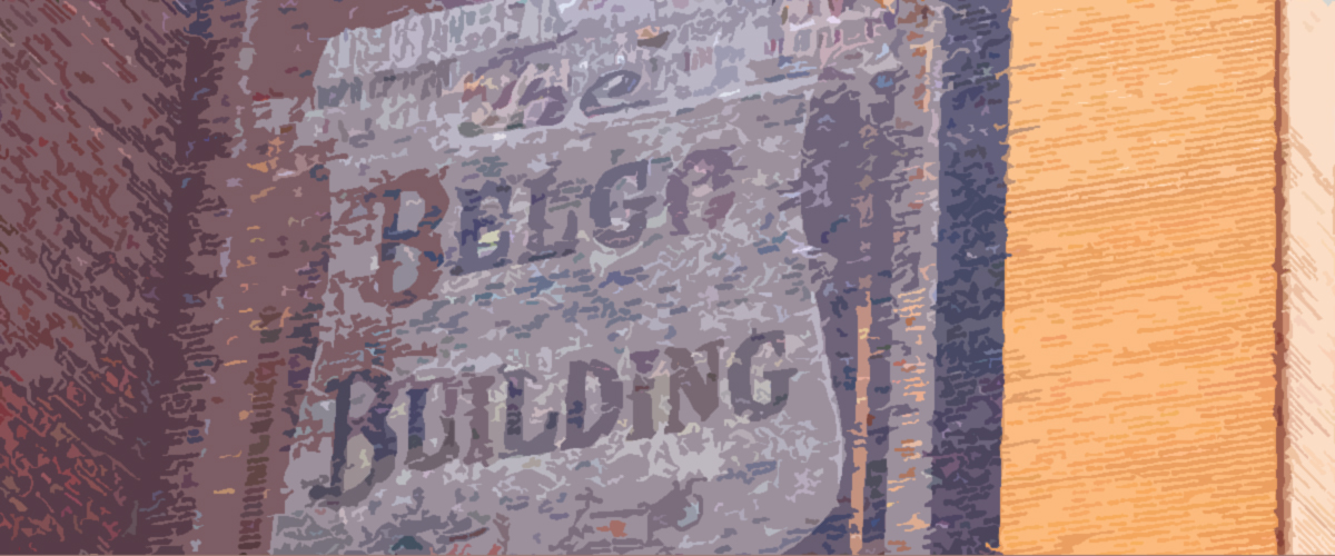 About the Belgo Report